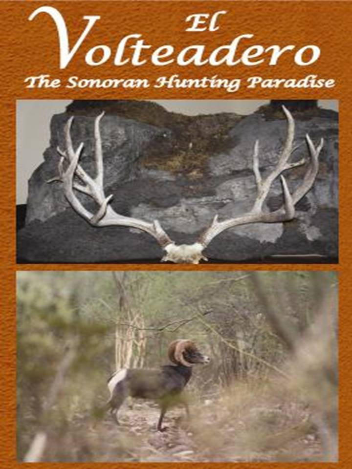 Sonora Mexico Mule Deer & Desert Sheep Hunting